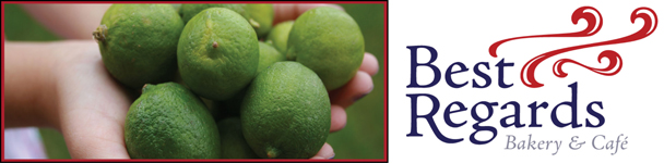 Key lime time banner